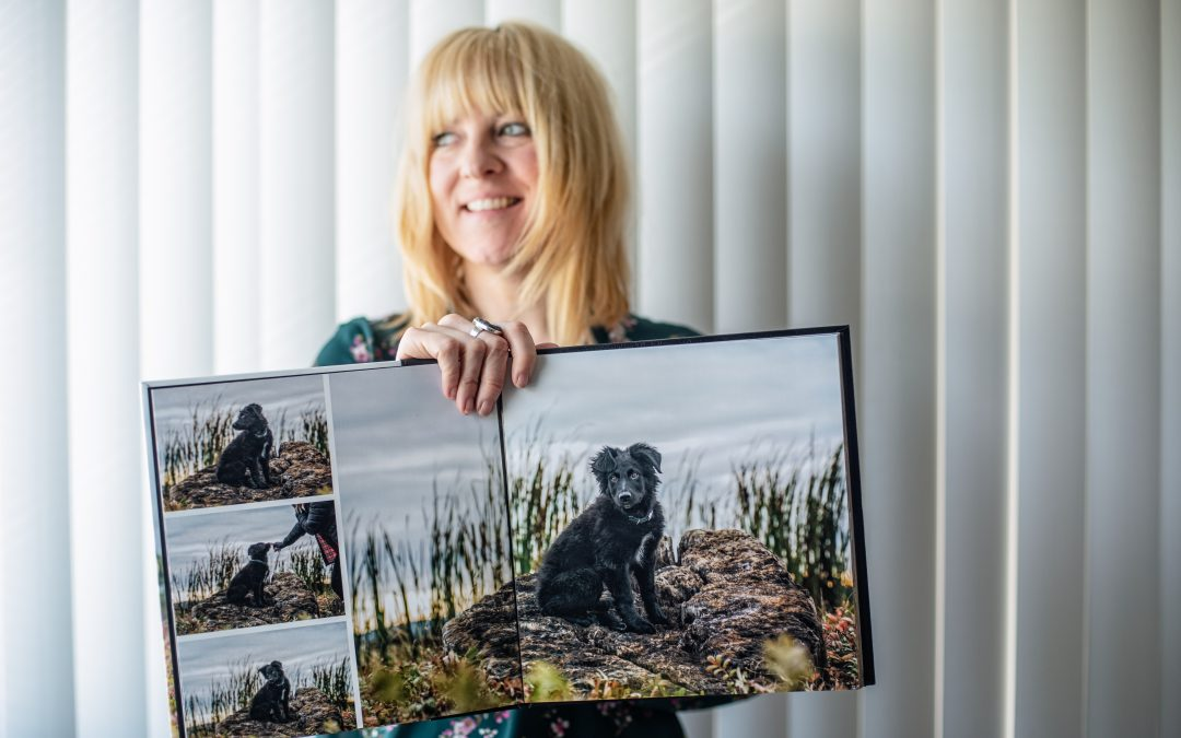 Why I became a pet photographer, and why you might want to have me capture your pet's story.